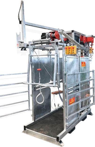 Image sur Cage de parage électrique PM 4600 Maréchalle